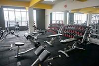 premium fitness center gym - 2